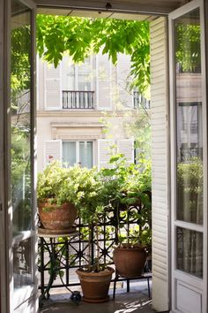 How to Garden Like a Frenchwoman: 10 Ideas to Steal from a Paris Balcony - Gardenista