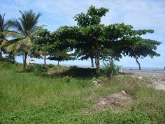 Terreno Beira Mar Em Perfeita Localização - Excelente Terreno Frente Mar próximo ao centro de Porto Seguro.
