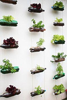 Modelo de horta urbana para fazer em sua casa!