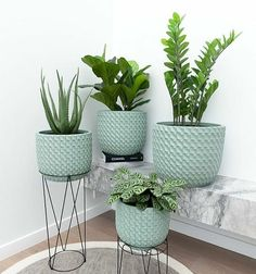 65 Indoor Garden Ideas You Will Fall For These trendy Home Decor ideas would gain you amazing compliments. Check out our gallery for more ideas these are trendy this year. House Plants Decor, Plant Decor, Plantas Indoor, Trendy Home Decor, Plants Are Friends, Outdoor Plants, Indoor Planters, Houseplants, Flower Pots