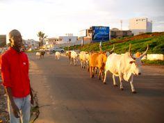 Dakar, Senegal by Kisori Thomas
