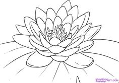 Large Image - Step 5. How to Draw a Lotus Flower, Water Lily