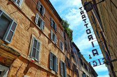 """Gigi"" - Roma  #photobydperry #loves_united_europe ##wp #Italia_super_pics #ig_italy #ig_rome #pocket_family #spgitaly #igerslazio #loves_united_italia #ilikeitaly #italia_dev #pocket_Italy #gallery_of_all #total_Italy #loves_united_team #yallerslazio  #italy_hidden_gem #igw_italy #fdnf #lazio #ig_lazio_  #ig_lazio #nikontoday #unlimitedrome #my_rome #thehub_italia #super_roma_channel #lazio_illife #rome"