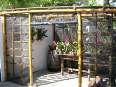 Bamboo Workshop: Orchids More Garden/backyard/outdoor by Homemade Greenhouse, Indoor Greenhouse, Small Greenhouse, Greenhouse Gardening, Greenhouse Ideas, Bamboo House, Bamboo Garden, Garden Beds, Orchid Nursery