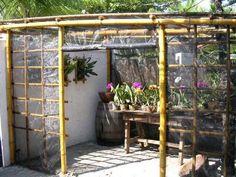 Oficina de bambu: Orquidários                                                                                                                                                      Mais