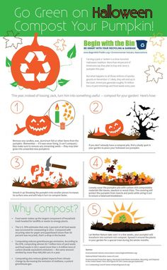 Infographic: Composting a Pumpkin for a Green Halloween - Modern Diy Halloween, Halloween Lanterns, Halloween This Year, Halloween Pumpkins, Happy Halloween, Green Life, Go Green, Composting At Home, Garden Terrarium