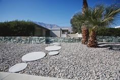 round pavers for modern landscaping Round Pavers, Mid Century Modern Landscaping, Spring Home, Palm Springs, Mid-century Modern, Sidewalk, Backyard, Table Decorations, Landscape