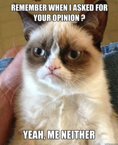 remember when i asked for your opinion yeah me neither - Grumpy Cat