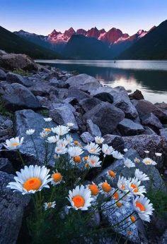 Portofolio Fotografi Pegunungan - Beauty From Rough Terrain  #MOUNTAINSPHOTOGRAPHY