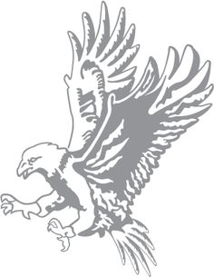 Glass etching stencil of Attacking Eagle. In category: Birds of Prey