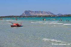 La Cinta - San Teodoro #Sardegna