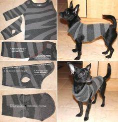pull pour petit chien en recylage - DIY, Tutoriels