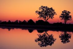 Moremi Reflections by Mario Moreno on 500px