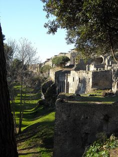 On the Boundary walls of Pompeii
