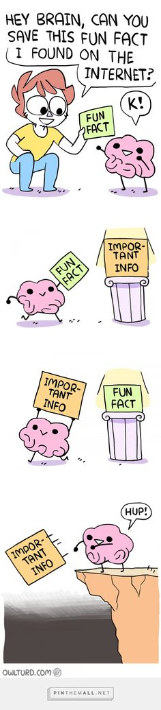 True. I know all these fun facts but i can't ever remember important things