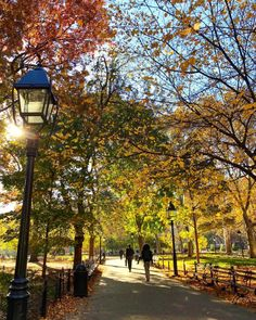 Washington Square Park by Scott Lipps @scottlipps | New York City Feelings | Bloglovin'