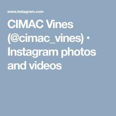 CIMAC Vines (@cimac_vines) • Instagram photos and videos