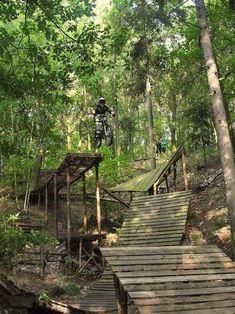 Choosing the Right Gear for Mountain Biking Best Mountain Bikes, Mountain Bike Trails, Moutain Bike, Rollers, Mt Bike, Mtb Trails, Downhill Bike, Bike Parking, Bike Reviews