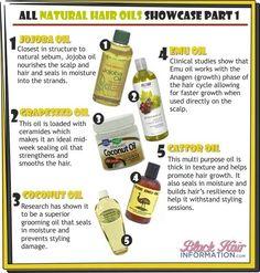 Top 15 Natural Hair Oils for Healthy Hair Growth