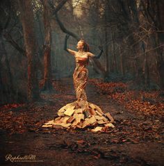 Per Aspera Ad Astra by Raphaelle Monvoisin
