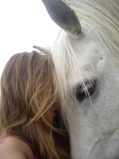 Horse love. Beautiful white horse snuggled up to girl.