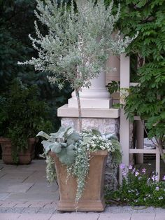 A square terracotta pot holds a variety of plants with silver foliage — urbanscapesdetroit, Fine Garden Management