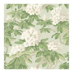 Cole & Son Wallpaper Bourlie Wallpaper ($125) ❤ liked on Polyvore featuring home, home decor, wallpaper, backgrounds, pattern, floral wallpaper, paper wallpaper, cream wallpaper, floral home decor and pattern wallpaper