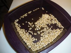 Popcorn in Epicure's Square Silicone Steamer.  1/4 cup of kernels, 1 tsp of coconut oil, 3/12 minutes in the microwave and done!  A quick, inexpensive, healthy nutritious snack.  We do this at least twice a week in our house for school lunches!  Adding in Epicure White Cheddar popcorn seasoning of course!
