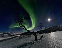 Aurora con luna