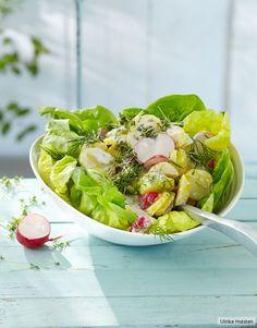 Kartoffelsalat mit Meerrettich