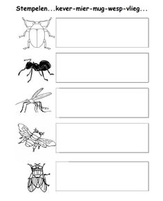 School, Letters, Teaching, Insects, Activities, Projects, Manualidades, Schools, Letter