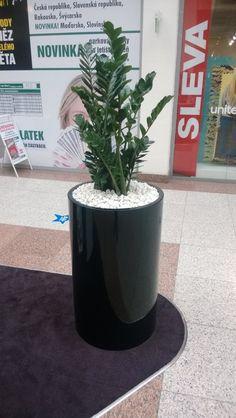 OBCHODNÍ CENTRUM OLOMOUC 12/2013   Výroba-květináče.cz Planter Pots