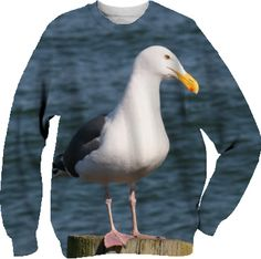 Seagull looking at you Sweatshirt from Print All Over Me