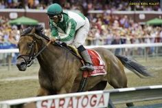 Artemis Agrotera wins the Grade 1 Ballerina at Saratoga on August 23, 2014. Runs faster than The Beast in his sprint.