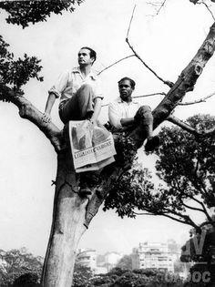 Aspecto do cortejo fúnebre na Praia do Flamengo. Rio de Janeiro (DF), 25 de agosto de 1954.