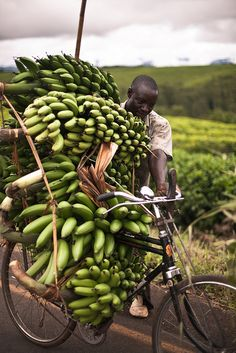 Green Bananas | Tanzania by Kristian Pletten, via Flickr