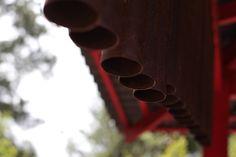 Jardim Botânico - Canon T5i