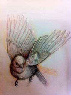 Bird Tattoo Sketch. Very pretty. Almost water color