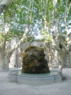 Fountain in the courtyard of the Cloitre Saint Louis, in Avignon, Provence