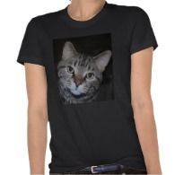 Organic Dillan The Cat Tee Shirt by Natural View