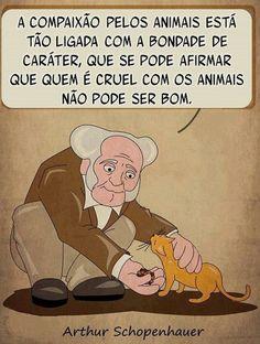 a compaixão pelos animais está tão ligada com a bondade de caráter, que se pode afirmar que quem é cruel com os animais não pode ser bom