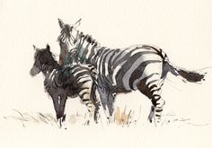 Zebra Painting by Tony Belobrajdic Watercolor Artwork, Watercolor Sketch, Watercolor Animals, Watercolor Portraits, Watercolor Ideas, Zebra Painting, Horse Sketch, Watercolor Techniques, Watercolor Tutorials