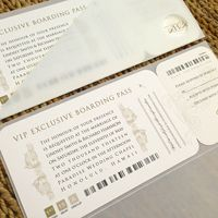 A+ NEW! Clear Frosted Boarding Pass Invitations $187.90
