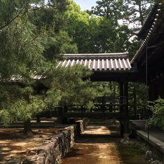 #kyoto #daitokuji
