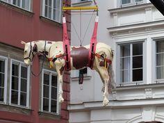 Pferde, die durch die Luft fliegen. Gibt's auch nur in Wien.