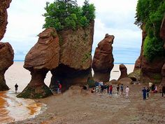 Bay of Fundy flower pots. Biggest tidal bore in the world. We didn't get to watch the tide change.but we did get to ride the tidal bore later in the vacation! Lush Canada, Hopewell Rocks, East Coast Travel, Flower Pots, Flowers, Places Ive Been, Mount Rushmore, Boats, Change