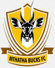 Mthatha Bucks F. Football Team Logos, Soccer Teams, Asia, Ferrari Logo, South Africa, Badge, Herb, Football Squads, Sport