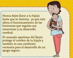 Crianza Respetuosa o Crianza con Apego