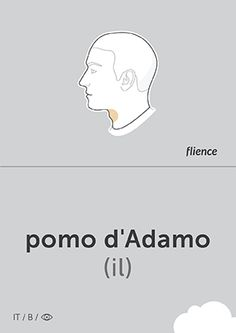 Pomo d'Adamo Adam's Apple (pomo:bone)  #Italian