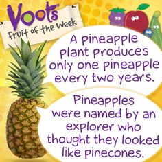 Fun facts about #pineapple, the Voots Fruit of the Week!